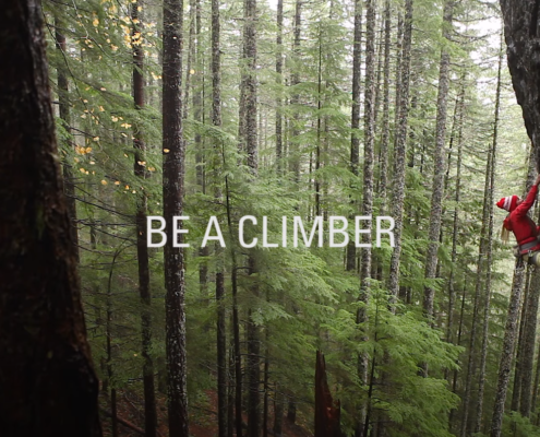 "Woman climbing on rock face with text that reads ""Be A Climber"""